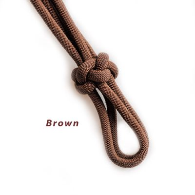 Brown Halter